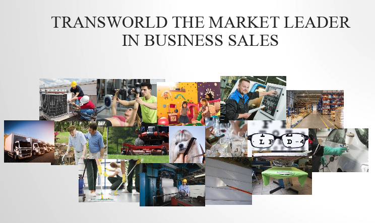 What Types of Businesses Does Transworld Sell?