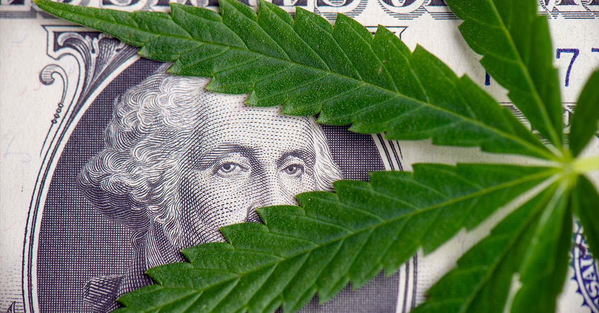Image for Is the Cannabis Industry Worth Investing In?